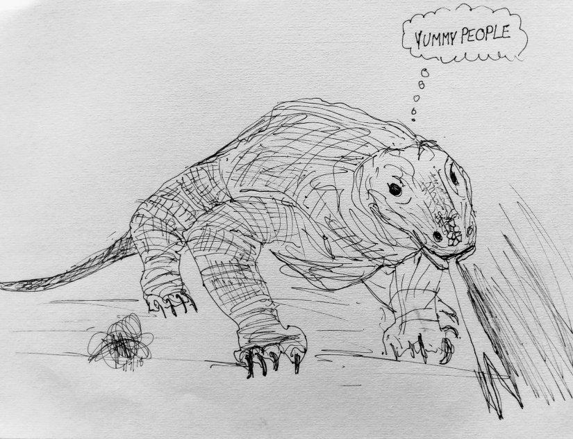 Thundercloud's drawing of a komodo dragon