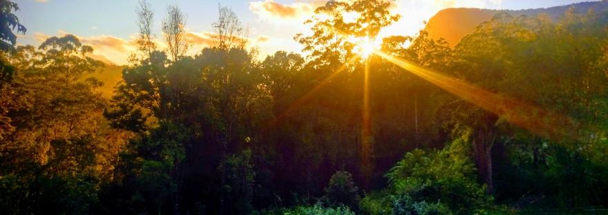 Blue Knob Sunrise